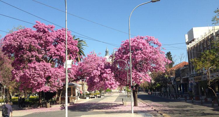 La Rioja in Argentinien