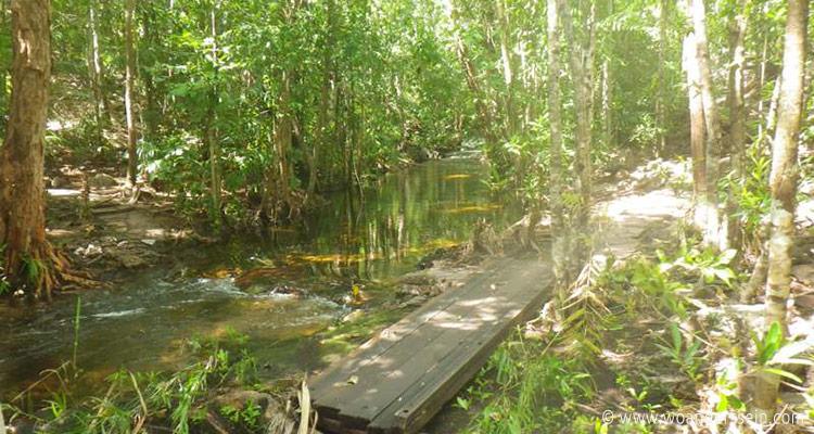 litchfield-park-shady-creek-walk4
