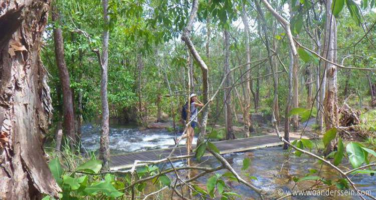 litchfield-park-shady-creek-walk7