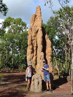 litchfield-park-termiten-wir