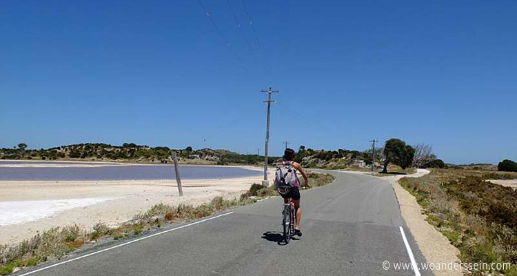 rottenest-island-fahrrad-chi