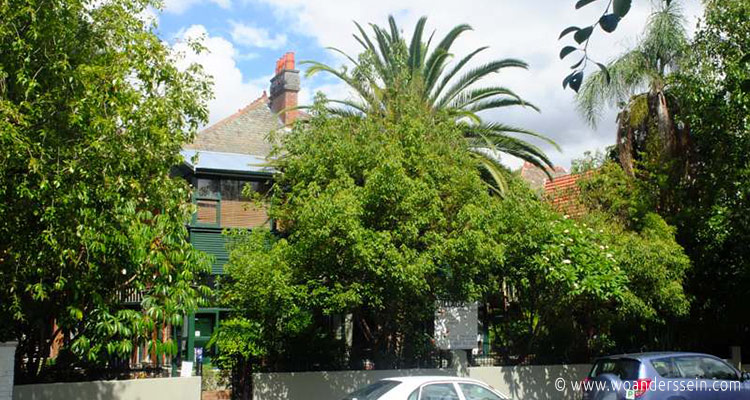 sydney-glebe-village-hostel