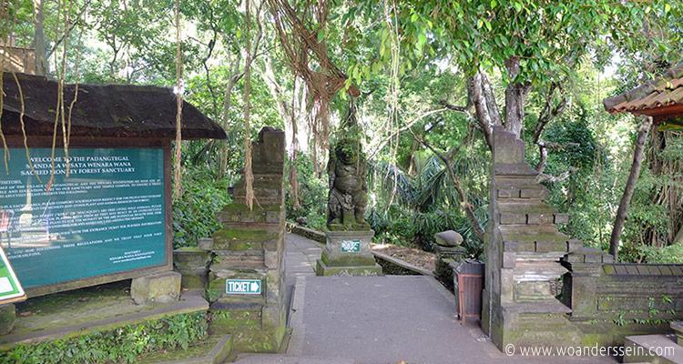 ubud-monkey-forest