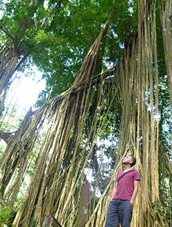 ubud-monkey-forest6