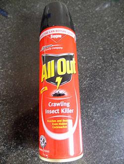 anjuna-all-out-kakerlaken-killer