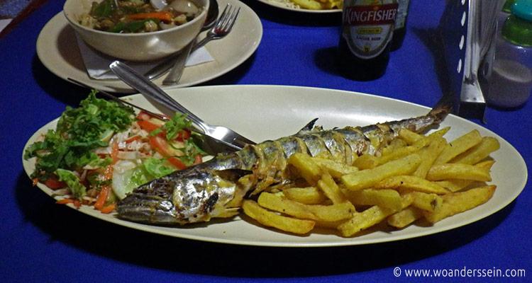 goa-ajuna-kingfish
