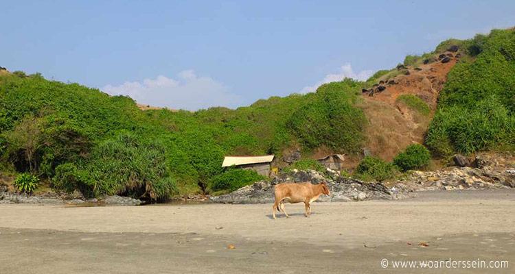 vagator-beach-hinten