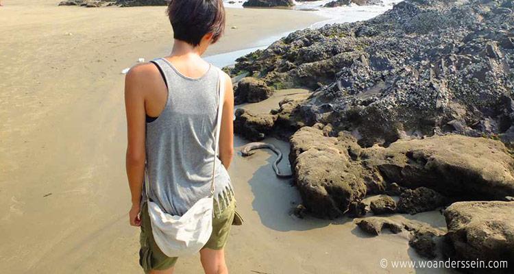 vagator-beach-wasserschlange