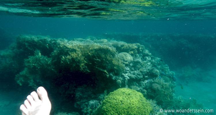 aqaba-south-beach3