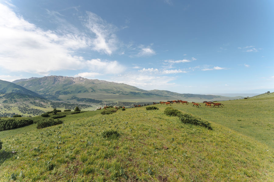 Reisetipps Kirgisistan