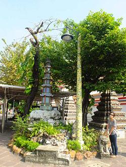 bangkok-wat-pho-chi