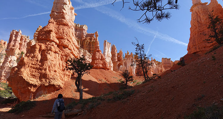 Unterwegs im Bryce Canyon